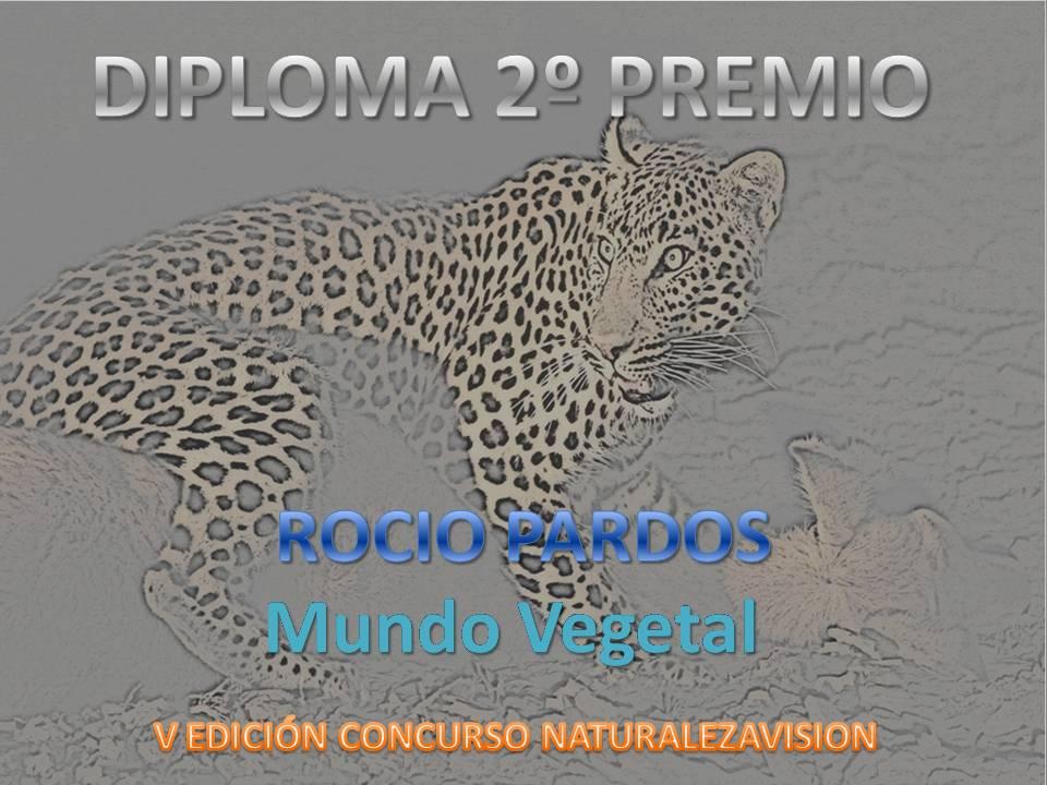 2ºpremio_m.vegetal_rocio_pardos